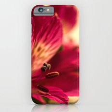 {lily the pink} iPhone 6 Slim Case