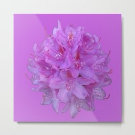 Rhododendron Bouquet 2 Metal Print