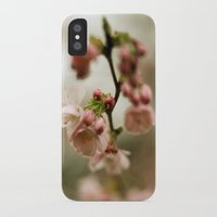 blossom iPhone & iPod Cases featuring blossom by EnglishRose23