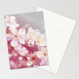 *Pinklight - Plum Blossoms Stationery Cards