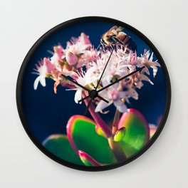 Crassula ovata Jade Flowers and Honey Bee Kula Maui Hawaii Wall Clock