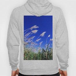 Sugarcane Field  Hoody