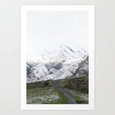 Mount Aspiring Trail Art Print