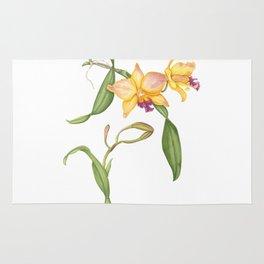 Flowering yellow cattleya orchid plant Rug