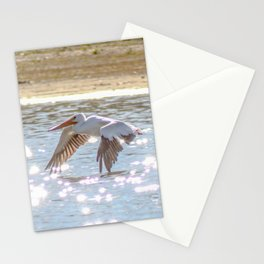 Skimming The Water Stationery Cards