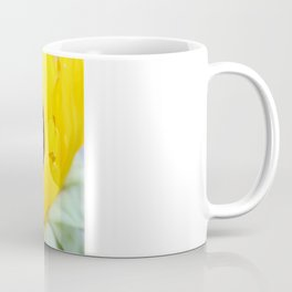 Sunflowers Face the Sun Coffee Mug