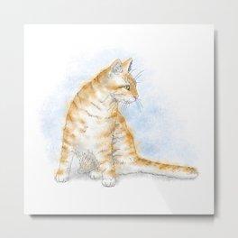 Cat 616 Metal Print