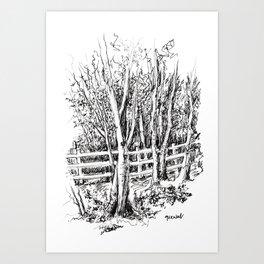 Black Park Art Print