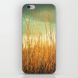 Wind in the Willows iPhone Skin