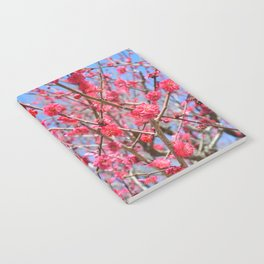 Japanese Spring #1 Notebook