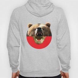 The Makings of a Bear Hoody