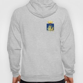 Coat of arms of IJlst Hoody