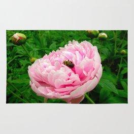 Bumble Bee on a Pink Peony Rug