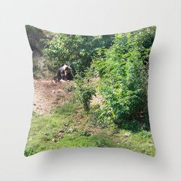 Furry Kindred Spirits Throw Pillow