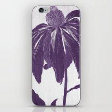 Purple Petals iPhone & iPod Skin