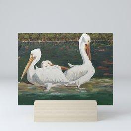 Pelicans Gathering Mini Art Print