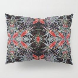 Aloe Better Pillow Sham