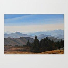 Grassy Ridge Bald, NC Canvas Print