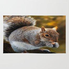 Squirrel nutkin Rug