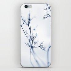 aeons iPhone & iPod Skin