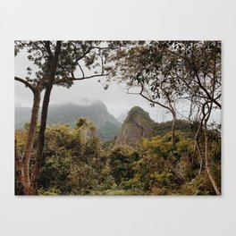 Tijuca Forest Canvas Print