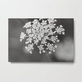 With Wildflowers Metal Print