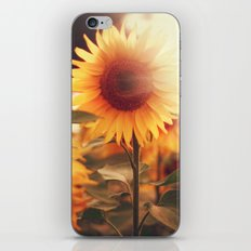 Sunflower. iPhone Skin