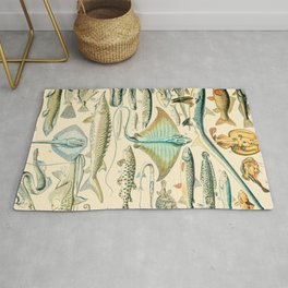 Vintage Fish Diagram // Poissons II by Adolphe Millot XL 19th Century Science Textbook Artwork Rug
