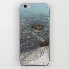 Wading In iPhone Skin
