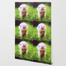 CUTE LITTLE BABY PIG PIGLET Wallpaper