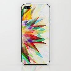 Colorful 6 iPhone & iPod Skin
