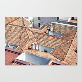 Old houses with tiled roofs Canvas Print