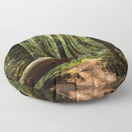 Humboltd Redwoods State Park Floor Pillow