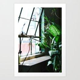 Urban Tropics Art Print
