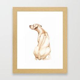 Ridgeback Framed Art Print