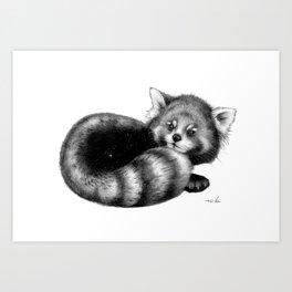 Cosmic Red Panda Art Print