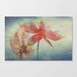 Kissed by the Summer Sun Canvas Print