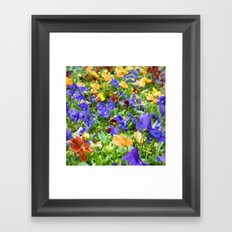 Flower Palette  Framed Art Print