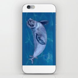 harp seal iPhone Skin