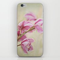 grace iPhone & iPod Skins featuring Grace by Kim Bajorek