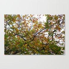 Autumn Patterns #3 Canvas Print