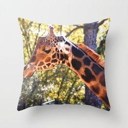 Baringo Giraffe Throw Pillow