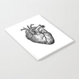 Vintage Heart Anatomy Notebook