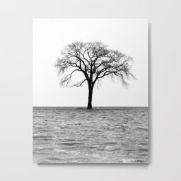 Flooded on White Metal Print