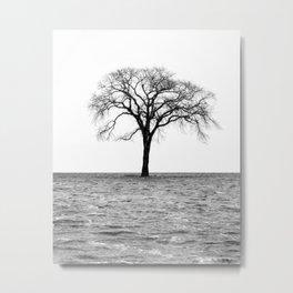 Flooded on White Metal Print