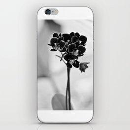 Vegetal Portrait II: Black Orchid iPhone Skin