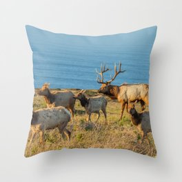 Tule Elk Herd Throw Pillow