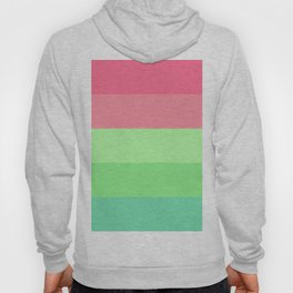Watermelon Paradise Stripe Colour Palette Hoody