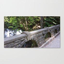 Whatcom Falls Canvas Print