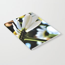 Flower No 4 Notebook